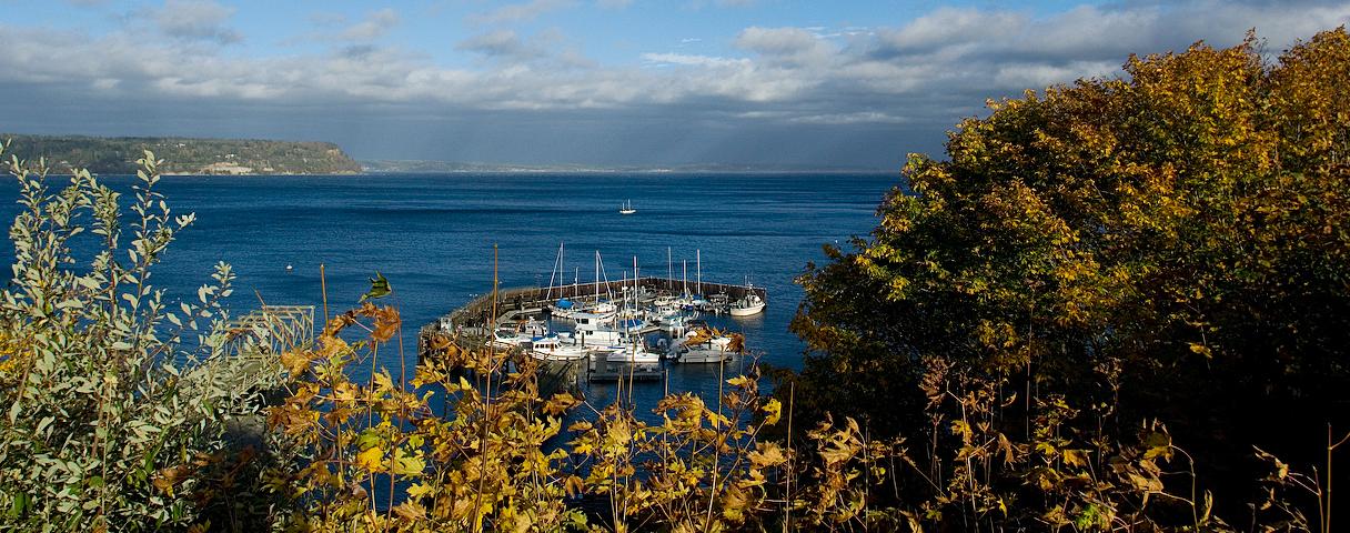 photo of langley marina